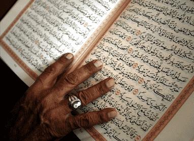 Study Arabic to English