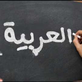 Professional Arabic language course online