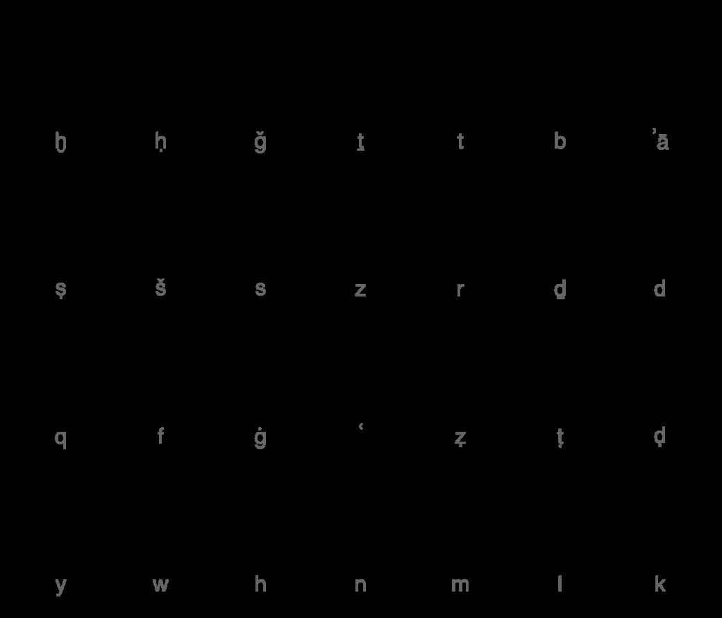 Arabic schedule