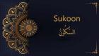 the sukoon in Arabic
