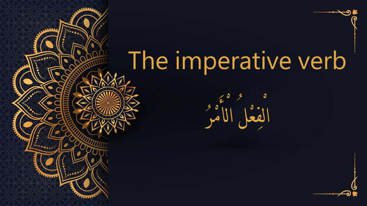 the imperative verb - Arabic free courses