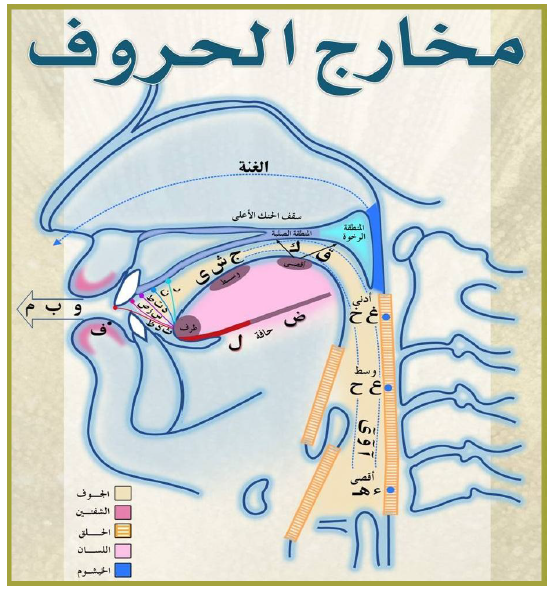 points of articulations of all arabic letters